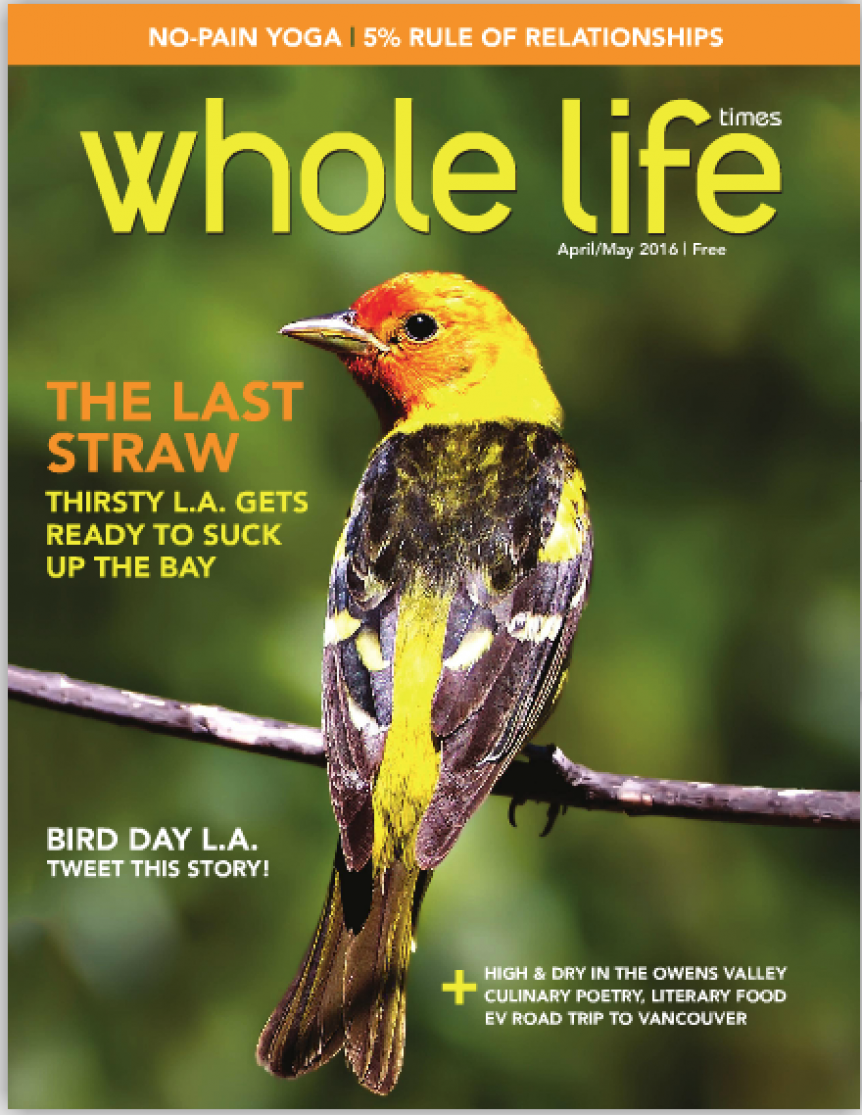 cover of whole life